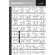 dumbbell workout exercise poster gym home training chart weight lifting new