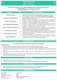 Mba Resume Format Download Resume Samples Mba Finance Resume Samples ...