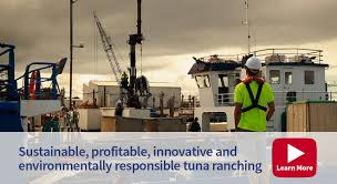 jobs and careers in the tuna industry n southern 1320×720 wharf