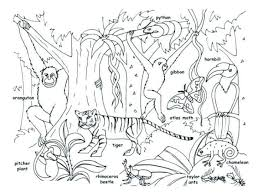 Forest Coloring Pages To Print Beautiful Coloring Animals Coloring