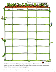 Green Bean Growth Chart Free Math Lessons For Prek 2 How To Grow Green Beans In A