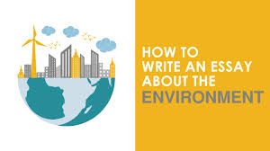 how to write an essay about the environment how to write an essay about the environment