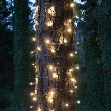 Best Warm White Led Christmas Tree Lights Led Christmas Lights Guide
