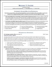 Government Job Resume Lawyer Resume Sample Written By Distinctive Documents Lawyers 59