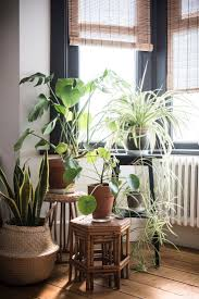 Indoor Garden 113 Best Indoor Garden Ideas Images On Pinterest