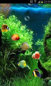 3d fish wallpaper. Exellent Fish Fish Tank 3D Live Wallpaper And 3d L