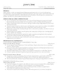 cv financial controller controller resume example financial controller resume template for
