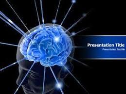 Amazon.com: Animated Brain Powerpoint Template| Brain Anatomy Ppt ...