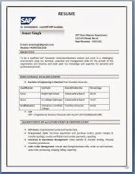 Sap Fico Resume Sample Astonishing Pdf For Your Create A Online With