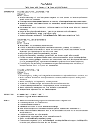 Download Travel Administrator Resume Sample as Image file
