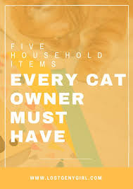 As a cat owner, there are certain things you should always have handy.  Because although being a cat owner is a lot of hard work, with a little bit  of ...