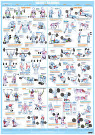 Body Fitness Chart Details About Weight Training And Bodybuilding Exercise Poster Barbell And Dumbbell Gym Chart