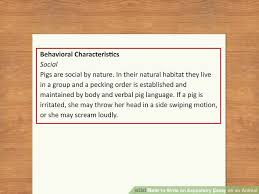 How to Write a Rough Draft     Steps  with Pictures    wikiHow