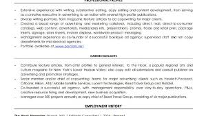 Resume Resume Writer Job Description Stunning Resume Editing
