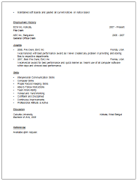 Professional Experience Examples For Resume  Resume It Examples