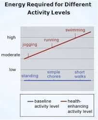 Activity Level Chart Meg Is Moderately Active And Completes 30 Minutes Of Daily
