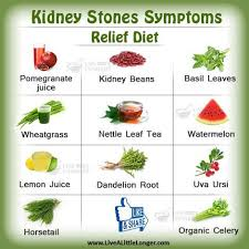 Kidney Stone Diet Chart Kidney Stones Relief Diet Health Nature For More Www