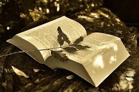 imagenes de libro libro abierto imágenes gratis en pixabay