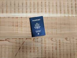 can you travel without a u s pport