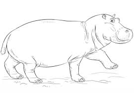 Small Picture Cute Hippo coloring page Free Printable Coloring Pages