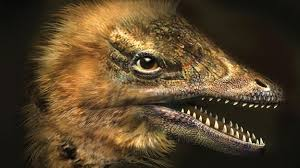 Earth - Chicken grows face of dinosaur - BBC
