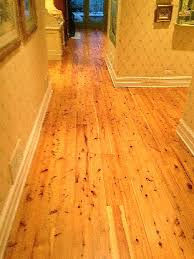 Australian Cyprus Pine Wood Floor Kashian Bros Carpet and Flooring