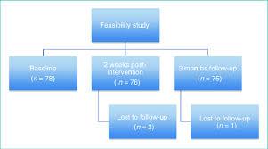 Feasibility Study Flowchart Download Scientific Diagram