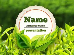 Young Tea Leaves Powerpoint Template Backgrounds 11382