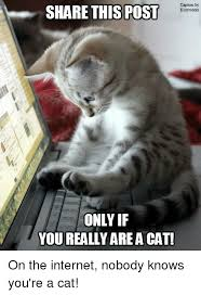 on the internet nobody knows you re a cat. Modren The On The Internet Nobody Knows Youre A Cat Throughout You Re T