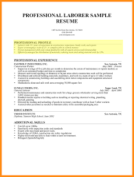 Professional Profile In Resume How To Write A Professional