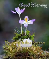 good morning hd images and es for wishing a friend on whatsapp