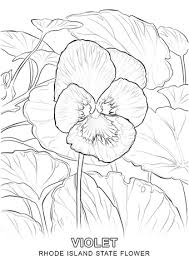 Small Picture Rhode Island State Flower coloring page Free Printable Coloring