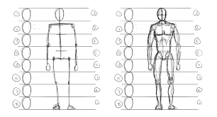 Human Proportions Chart Lines 4 5 Figure Drawing Intro Lessons Tes Teach