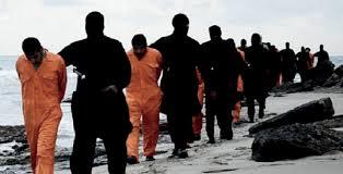 المسيحيون لايزرعون  الصنوبر ,  من  تشبيحات  نبيل  فياض !