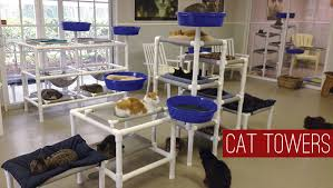 cat furniture by feline snoozers cat trees cat towers cat beds no carpet easy to clean and indestructable no carpet sanitary for shelter use