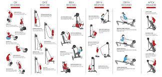 ropeflex quick start exercise chart