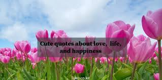 Cute Quotes About Love Life And Happiness ▷ Tukocoke Simple Cute Simple Quotes About Life