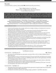 Vice President Resume Samples Vice President Sales Resume 17108 Cd Cd Org