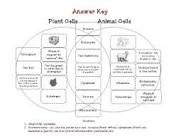 Venn Diagram Comparing Animal And Plant Cells Degree Plant And Animal Cell Worksheet Answers Worksheets Comparing