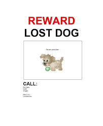Lost Cat Flyer 40 Lost Pet Flyers Missing Cat Dog Poster Template Archive