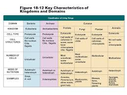 Classification Review Ppt Video Online Download