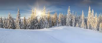 Risultati immagini per foto invernali bellissime