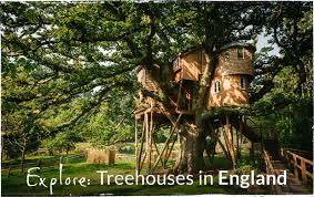 Treehouse Holidays UK  West Lexham Manor NorfolkFamily Treehouse Holidays Uk
