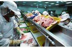 Food Safety Specialist 13 Best Fss Corp Food Safety Specialists Images Food