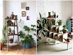 best indoor plants for office. Indoor Plant Decor Best Plants For Office O