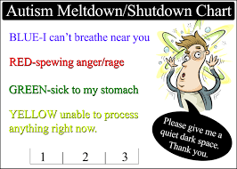 Autism And Communication Emotion Feelings Chart