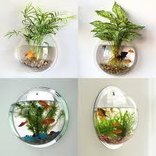 acrylic fish bowl wall