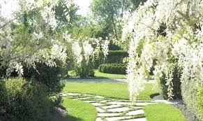 white wire garden fence. White Garden Wisteria Wire Fence .