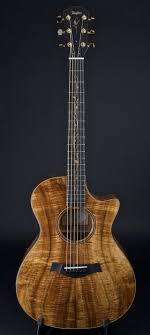 Taylor acoustic guitar - such a gorgeous instrument