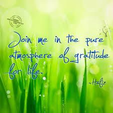 Hafiz Quotes Beauteous Gratitude Habitat Hafiz